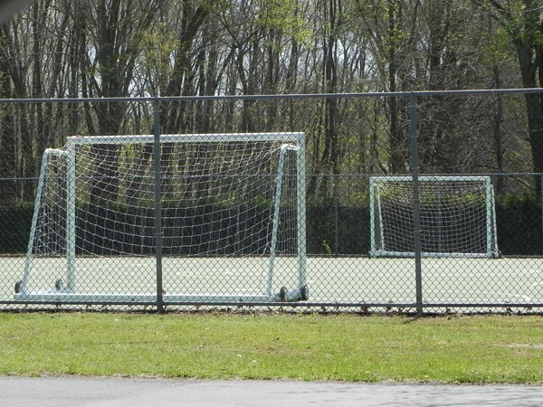 Washington Lake Park offers a place to practice hockey in warm weather
