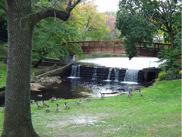 Bogert's Pond dam, waterfall and bridge of the gorgeous Goodwin Park section of Westwood