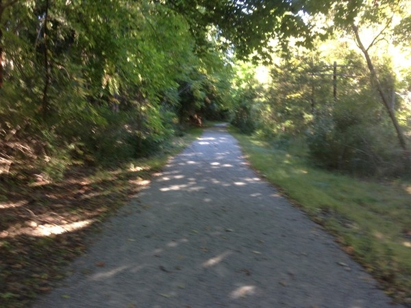 Many great walks on the trails in Andover Township