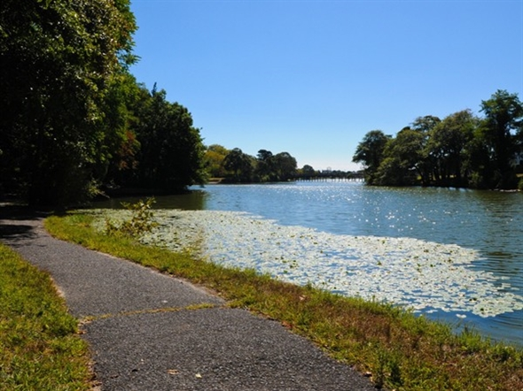 Divine Park glistens in the summer sun