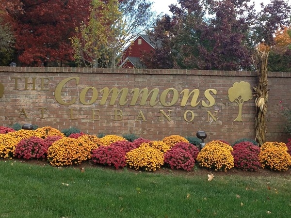 Lebanon Commons, one of Lebanon's great town home communities