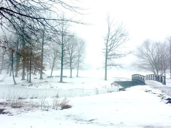 Mercer County Park on a foggy, snowy morning