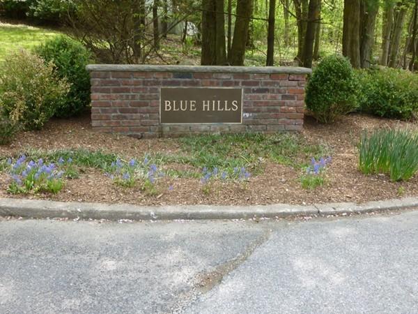 Blue Hills - Mahwah