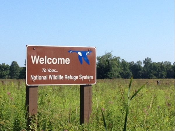 Great Swamp National Wildlife Refuge System