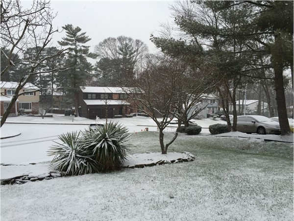 Snowy morning in Sewell
