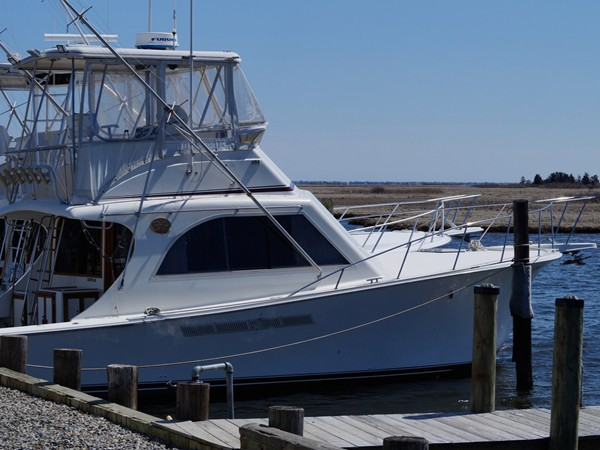 One of many marinas in Barnegat