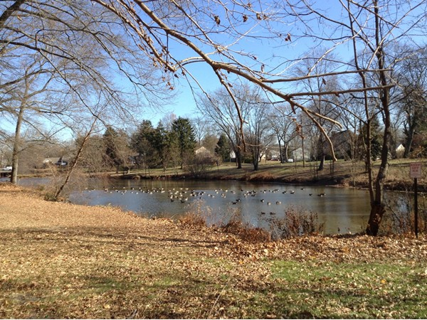 Mount Holly, NJ offers a lakeside park called Wollmans Lake.