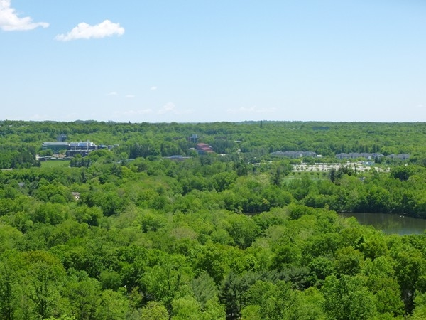 Hawk Rock Green Trail - has great view of Ramapo Valley College