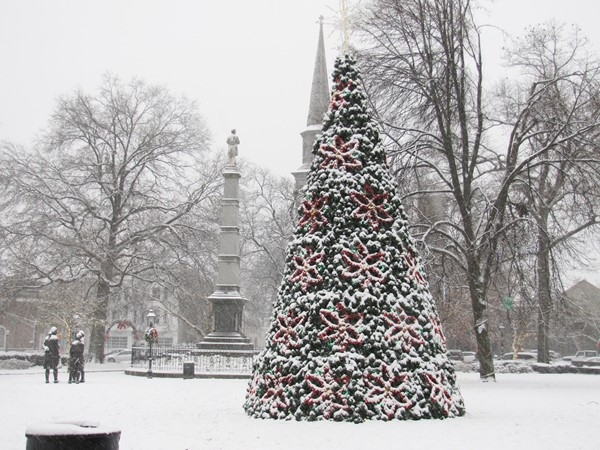 Morristown Center's first snow fall with holiday lit tree