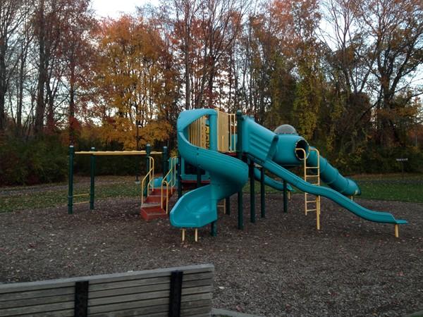 Manalapan Recreation Center Playground
