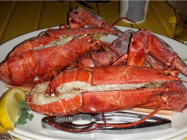 Enjoying the lobster dinner at Joe's Fish Co. on the Wildwood boardwalk