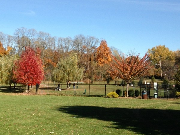 Marlboro Township's off-leash dog park is a great place for your pup to run & play!