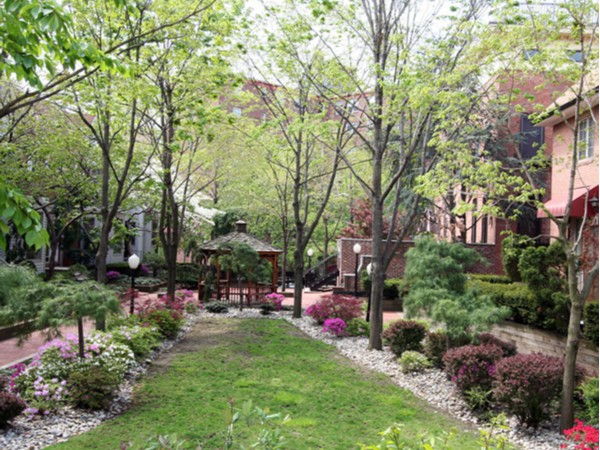 The secret courtyard gardens of Roberts Court Condominiums at 456 9th Street
