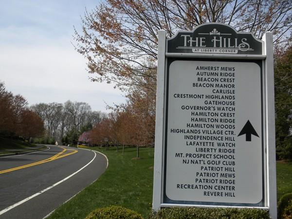 Communities & Amenities in The Hills at Liberty Ridge