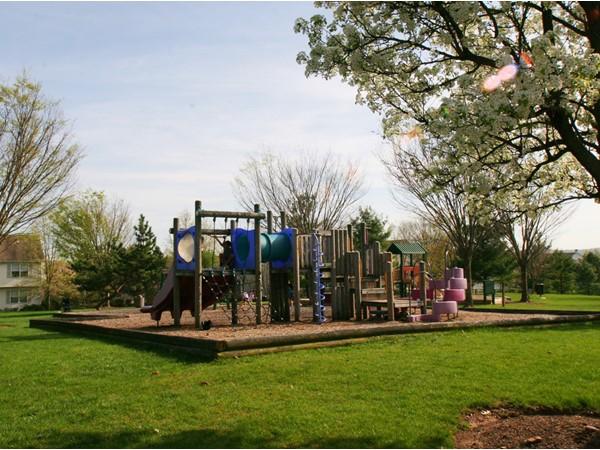 Spring Ridge playground