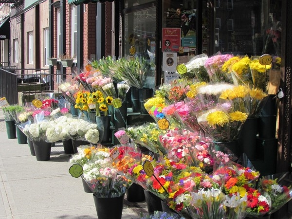 Beautiful flowers on Washington Street for Easter.