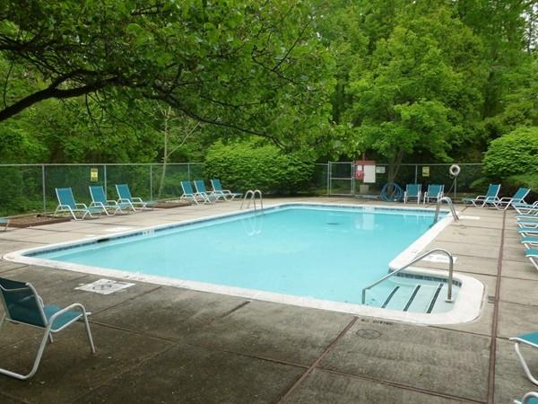 Indian Ridge Pool