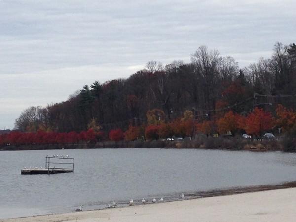Budd Lake in the late fall