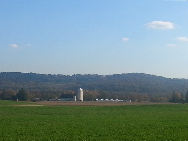 A beautiful dairy farm in Allamuchy
