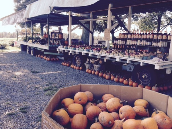 Local roadside stand offers locally grown, harvested and canned produce. Local honey also