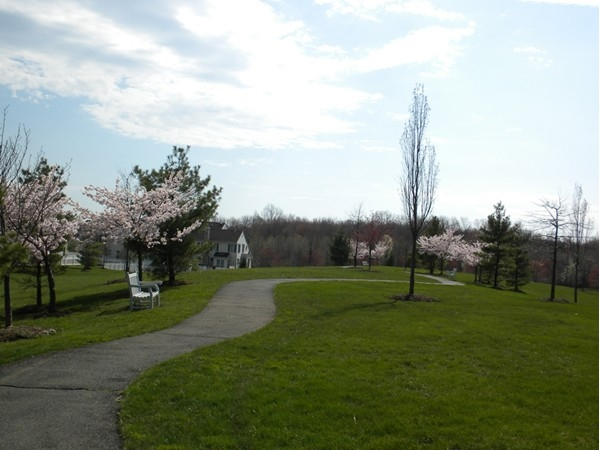 Miles of walking paths featuring scenic views & stunning foliage set in The Hills of Basking Ridge