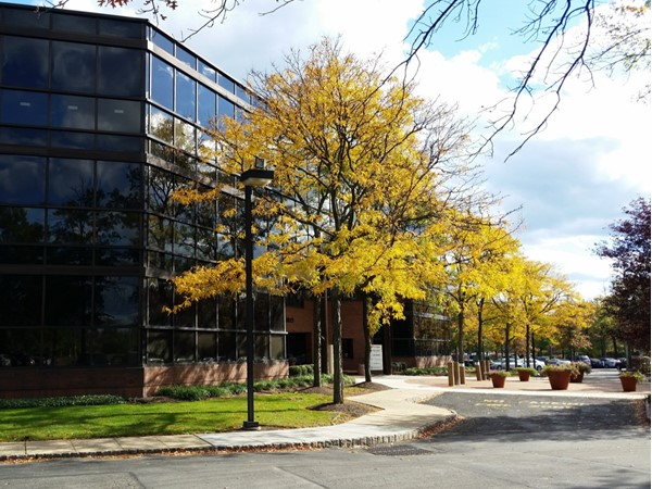 The Edison Square Office Park, part of the municipal complex