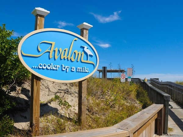 Avalon welcomes you to the shore