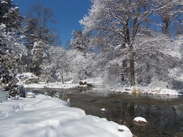 The pond at Sayen Gardens in winter