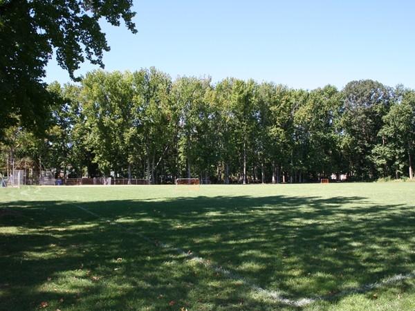 Patterson Park Shrewsbury