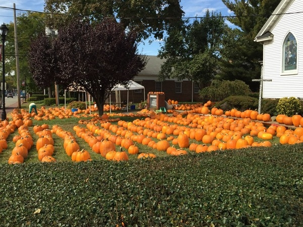 The Great Pumpkin Patch. Union Avenue, Cresskill