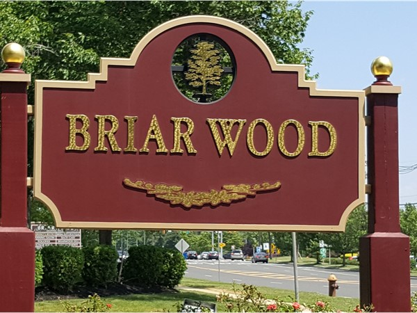 Looking for a single family home or condo. Try looking in Briar Wood