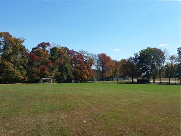 Chester has many beautiful parks with fields for soccer and baseball