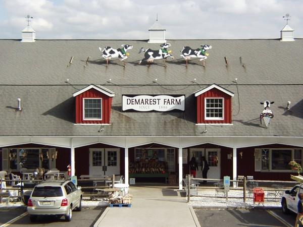 Demarest Farms