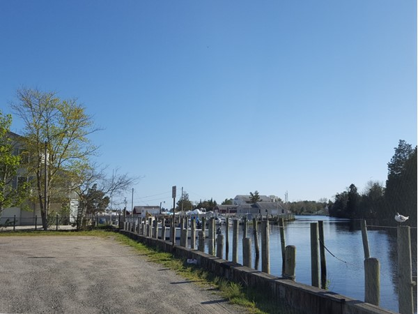 Views down Tuckerton Creek on a beautiful day
