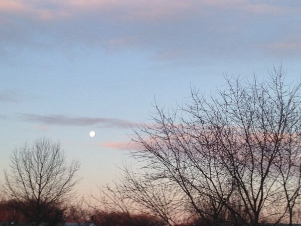 Winter moon over Manalapan