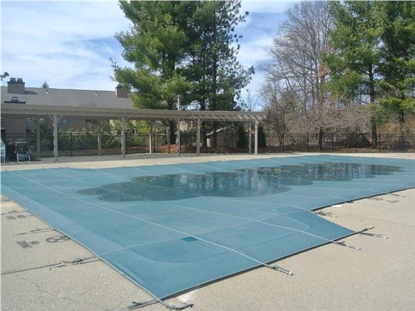 Pool and kiddy pool