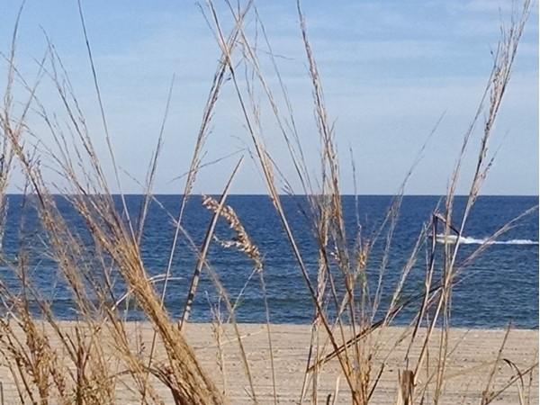 Beautiful views at Beach Haven