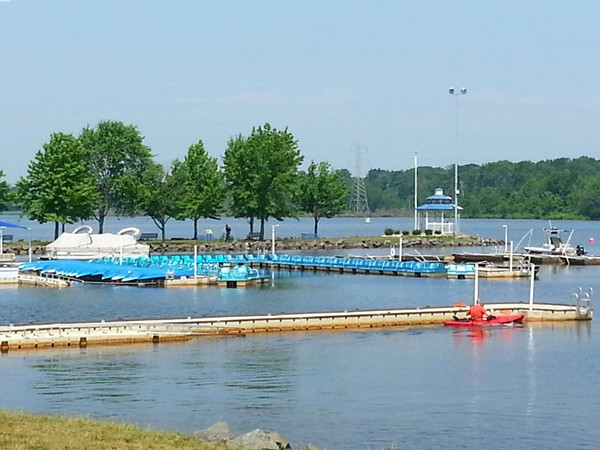The Marina at Mercer County Park. Row boats, kayaks and paddle boats are available for rental