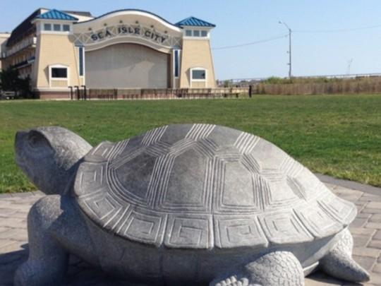 Sea Turtle sculpture in Excursion Park
