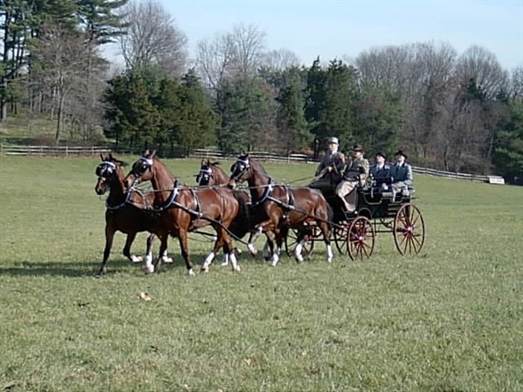 Thanksgiving Day tradition with Essex Hunt Club