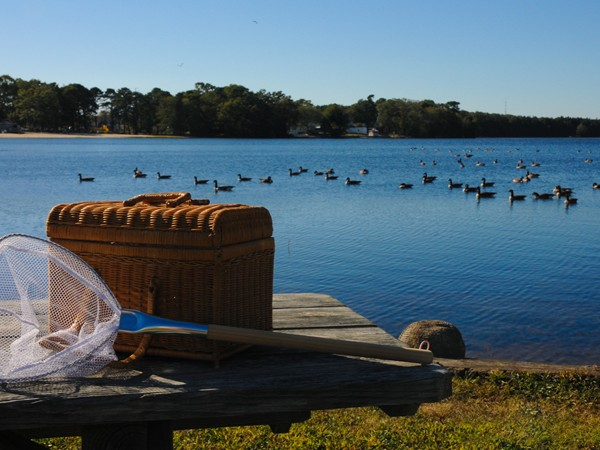 A fishing net and picnic basket await its owners at Lake Manahawkin