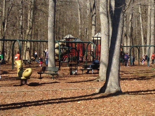 Swings and playground at Nomahegan Park