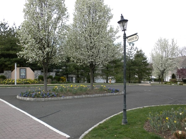 Entrance to Amherst Mews Development
