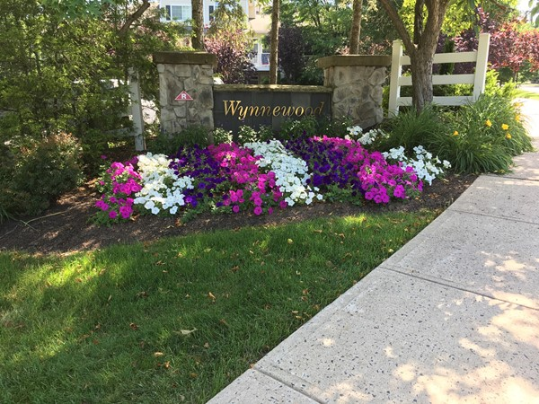 Living in Wynnewood you have access to recreational facilities and walking/biking/jogging paths