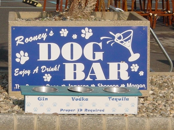 Doggies who stroll the boardwalk - take a drink but bring I.D.