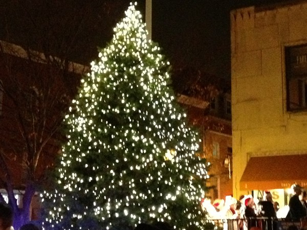 Montclair Town Christmas Tree