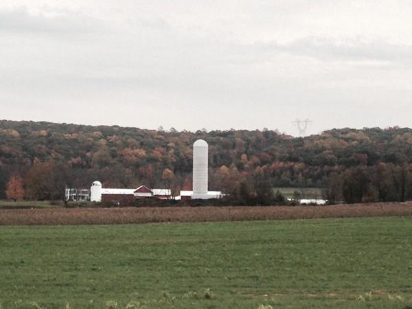 Ort Farm