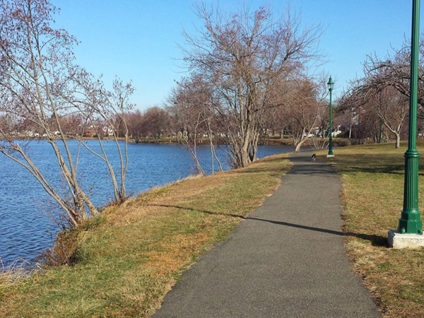 Another view of Franklin Lake Park in December. There's my dog Stanley up ahead on the path.