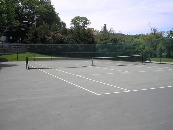 Tennis anyone? Nice tennis courts in Lakeshore Village