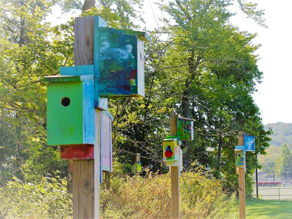 Artistic birdhouses lining the path to Snyder Park
